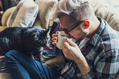 balanced diet for cats liverpool