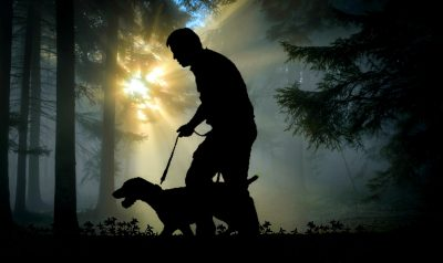 Hiking With Pet Dogs
